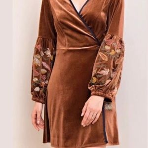 Entro Velvet Embroidered Dress